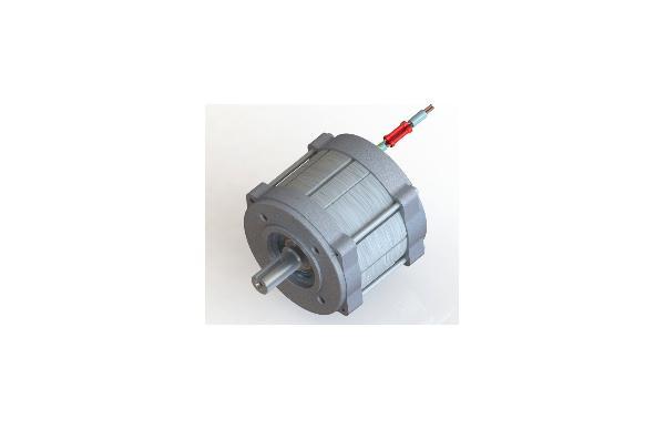 Электродвигатель синхронный ДСМГ